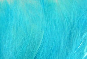 Marabou kingfisher/fluor blue