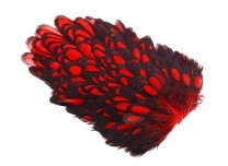 Whiting American Hen Saddle Black Laced - Red