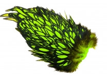 Whiting American Hen Saddle Black Laced - Fl. Green Chartreuse