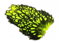 Whiting American Hen Saddle Black Laced - Fl. Yellow Chartreuse